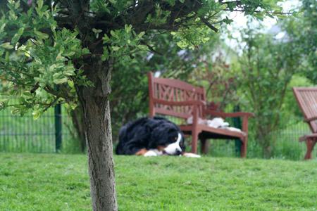 Picknick im Garten, cool.